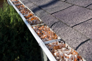 Fall Home Maintenance: Leaves Clog Gutters