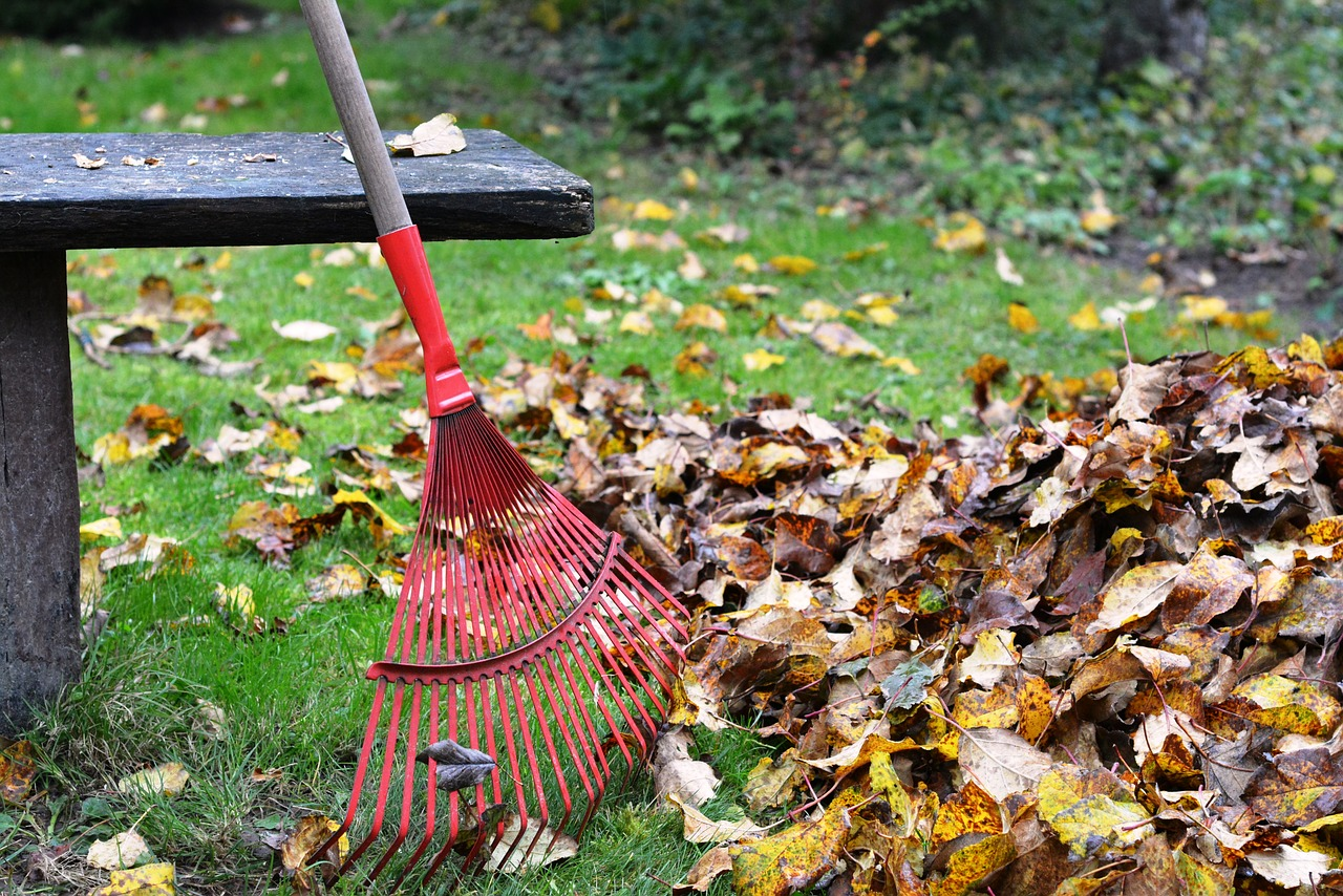 Raking Leaves Fall Home Maintenance
